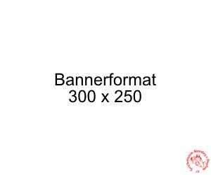 Banner-300x250