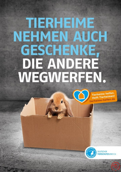 Tierheime helfen_Kaninchen