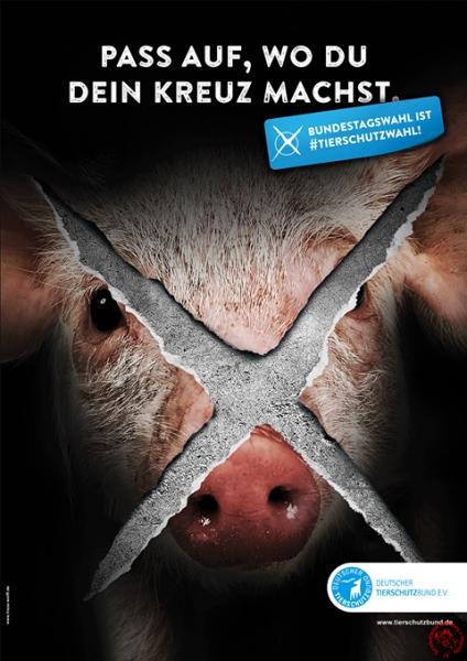 Bundestagswahl Tierschutzbund