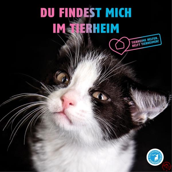 csm_TH-Tiere_Motive_Slider4_38fc92cb76